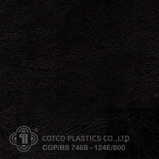 CGP/BS 746S-124E/800